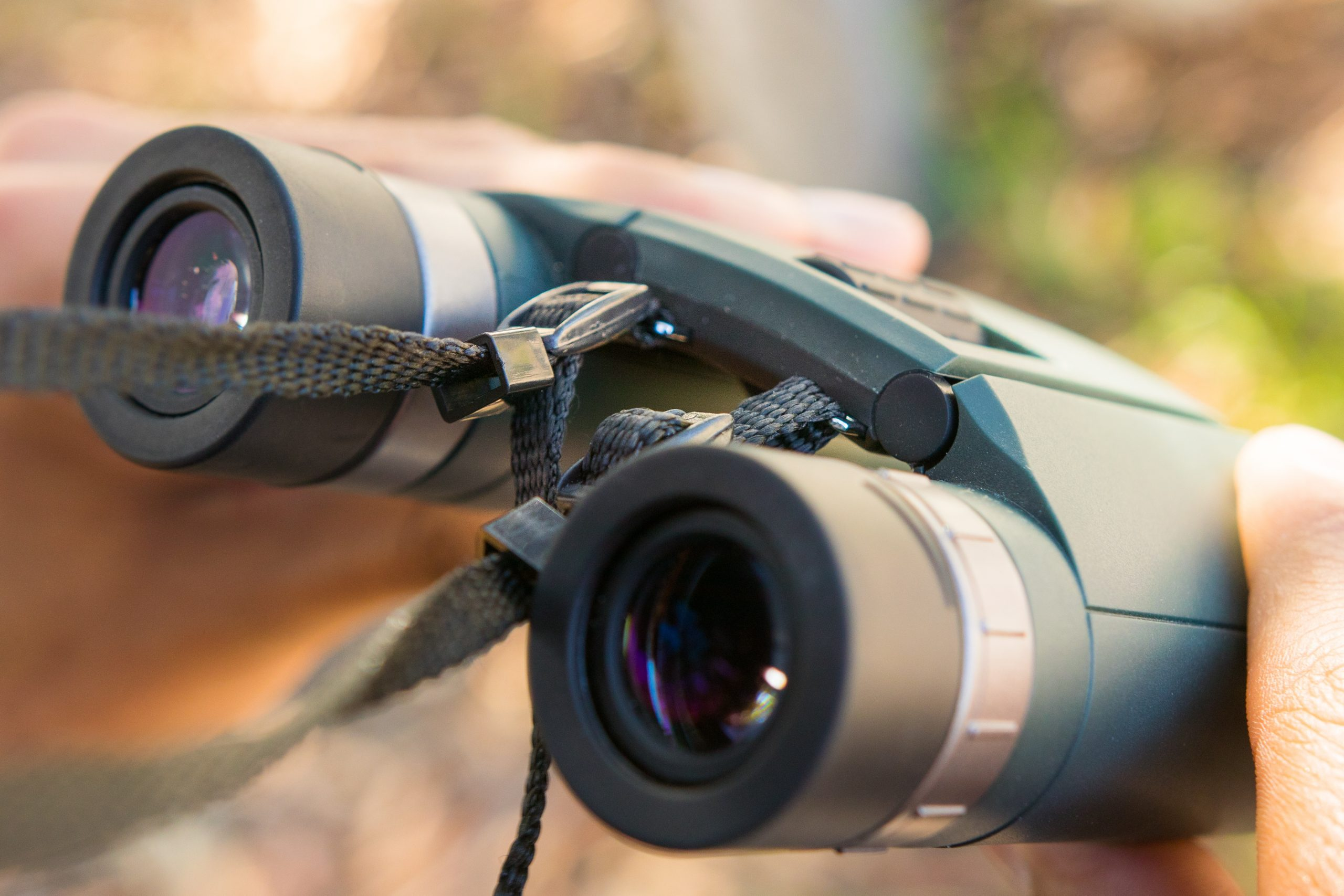 5 Best Binoculars to Buy Right Now! 1